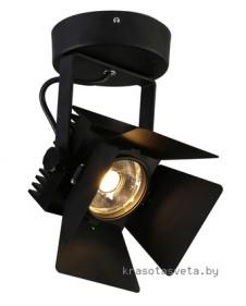 Светильник Favourite Projector 1770-1U