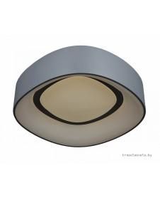 Светильник потолочный светодиодный Omnilux Enfield OML-45217-51