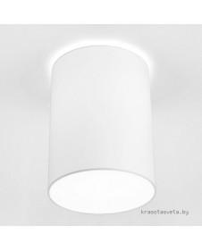 Потолочный светильник Nowodvorski CAMERON 9685