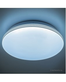 Светодиодный настенно-потолочный светильник с диммером CITILUX СИМПЛА CL714R48N