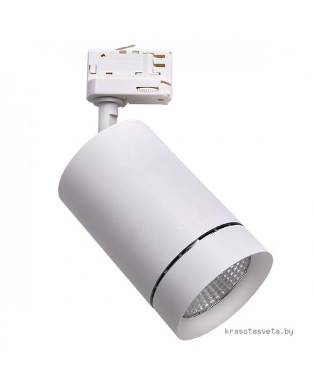 Светильник трековый Lightstar CANNO 303562
