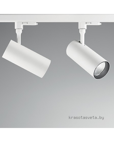 Светильник IDEAL LUX SMILE 20W CRI90 20° 189659