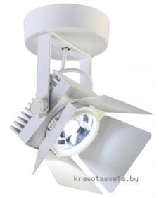 Светильник Favourite Projector 1771-1U
