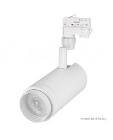 Трековый светильник трехфазный Arlight LGD-ZEUS-4TR-R100-30W White 6000K 024608