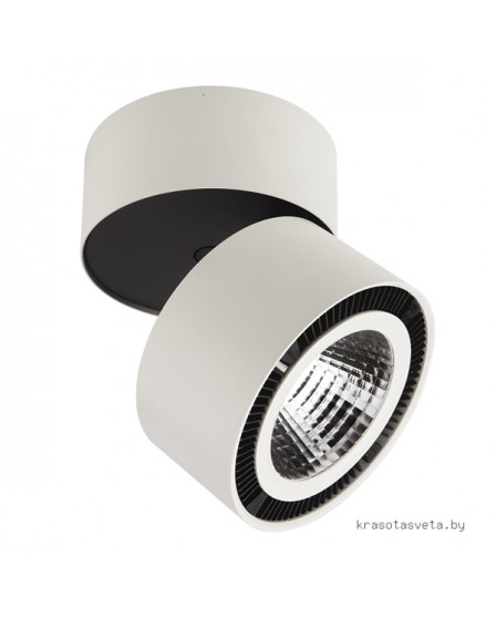 Светильник Lightstar Forte 213830