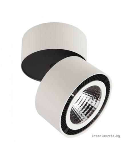 Светильник Lightstar Forte 214850