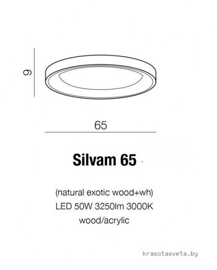 Потолочный светильник Azzardo SILVAM 65 AZ2698