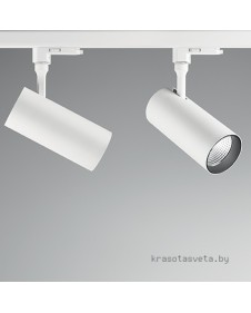 Светильник IDEAL LUX SMILE 20W CRI80 20° 189673
