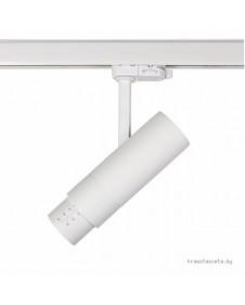 Светодиодный трековый светильник LIGHTSTAR FUOCO 215446