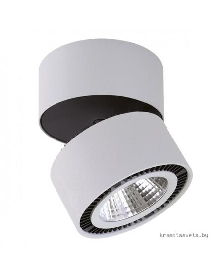 Светильник Lightstar Forte 214839