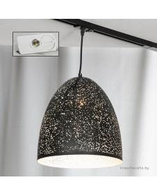 Светильник подвесной трековый Lussole Track Lights LSP-9892-TAW